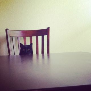TableCat